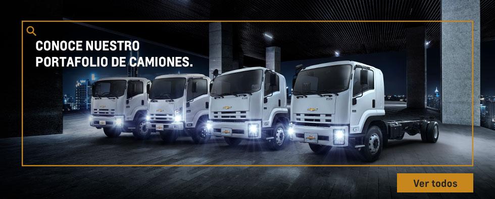 Portafolio de camiones