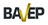 Logo_Bavep11125.jpg