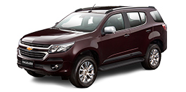 Chevrolet Trailblazer color Edible Berries