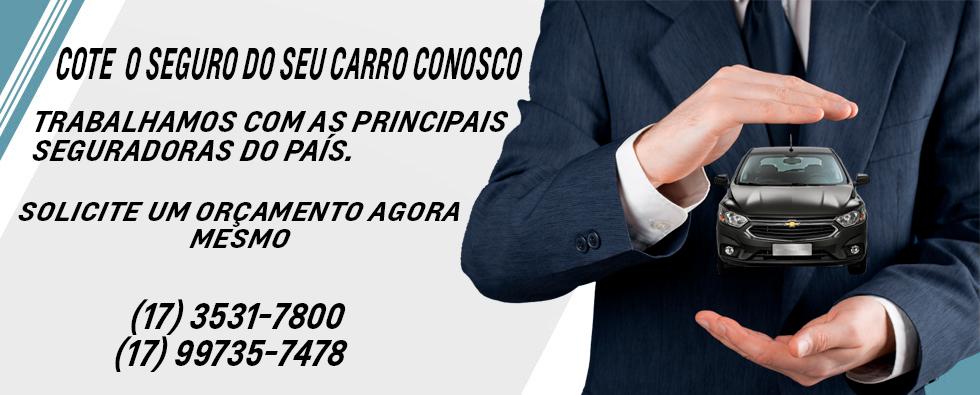 Seguros_Site