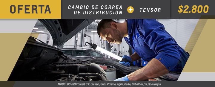 Cambio de correa de distribución en Andina Motors