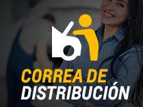 Correa de distribución